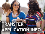 In focus: Transfer Application Information